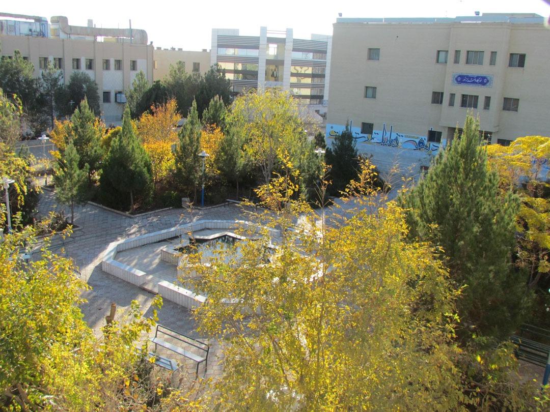 دانشگاه اردکان