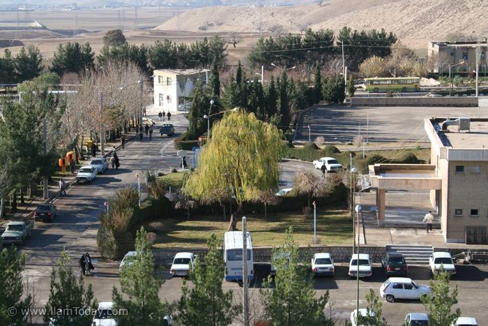 دانشگاه ایلام