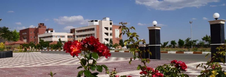 دانشگاه تربت حیدریه