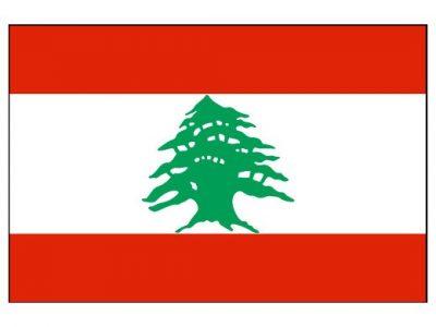 آمادگی دانشگاه فنی و حرفه ای برای پذیرش دانشجوی لبنانی
